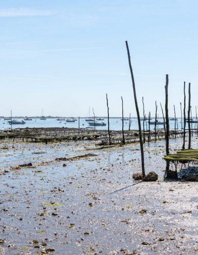 balades sur le bassin d'arcachon - Le tikiflo